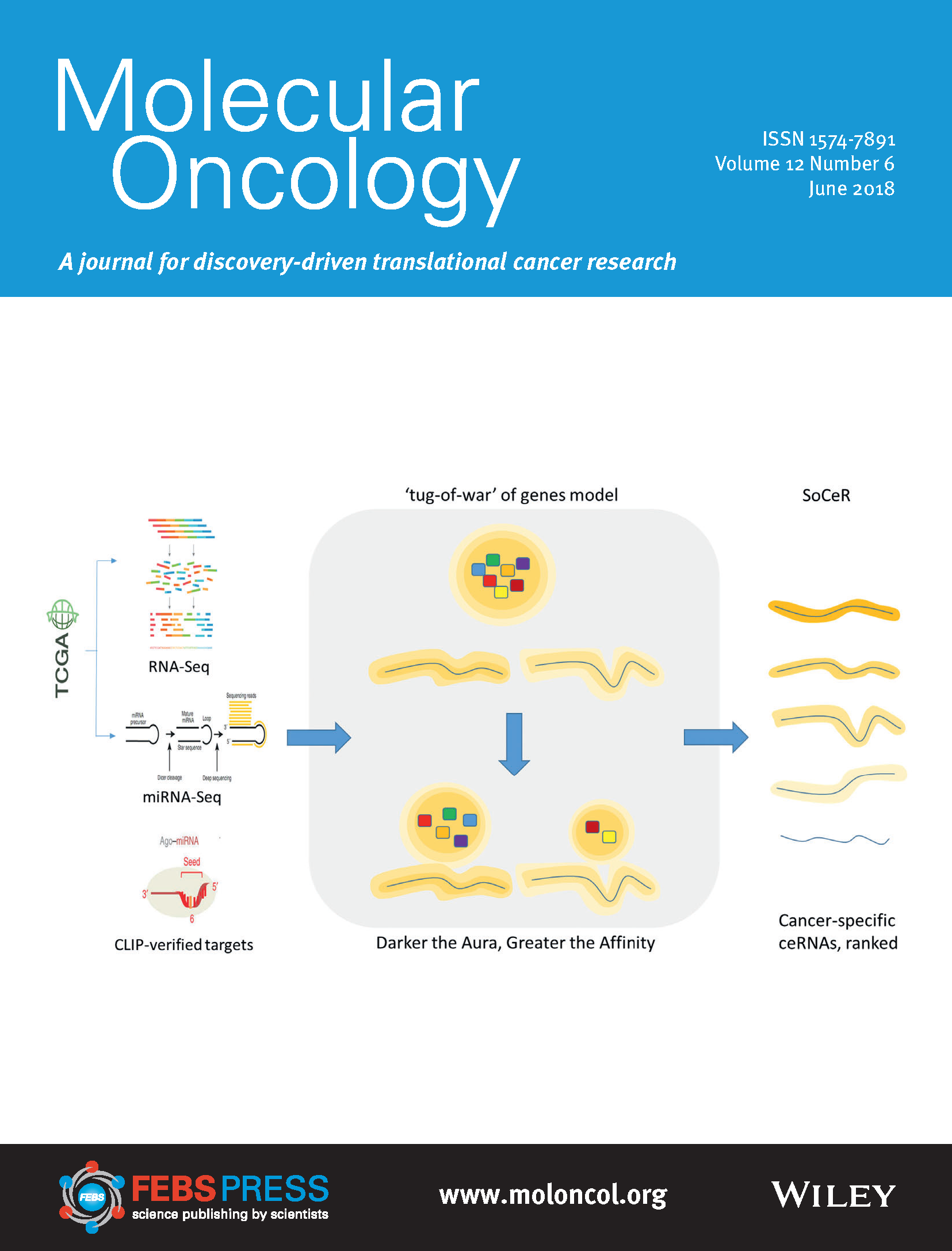 Our work on cover page of June 2018 issue of Molecular Oncology